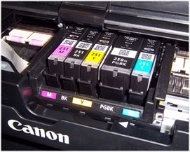Canon-250-251-cartridges-installed_sm